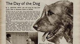 February 5, 1937 - The Day of the Dog