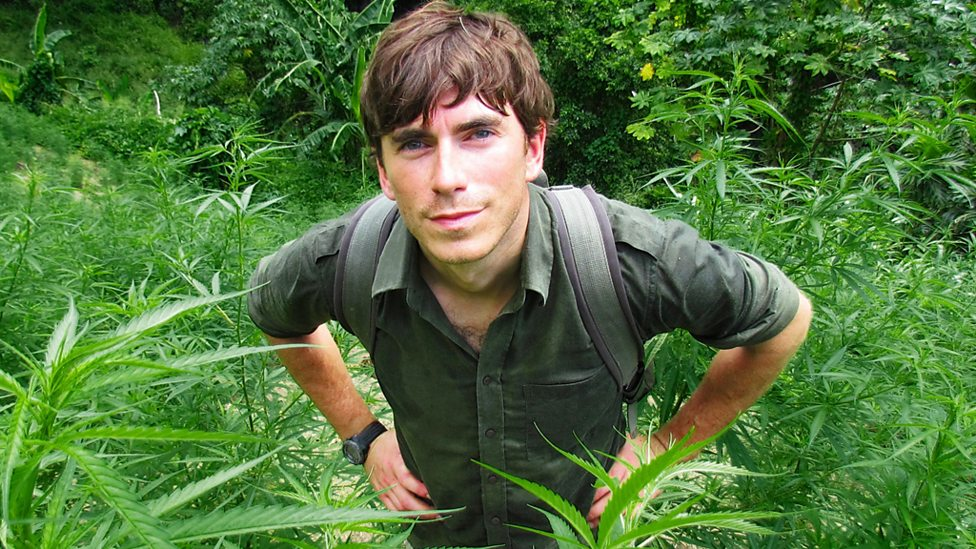 Simon at a marijuana farm in St Vincent & the Grenadines