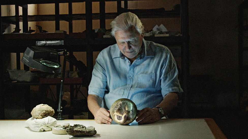 David Attenborough with graphic titanosaur embryo based on detailed skeletons