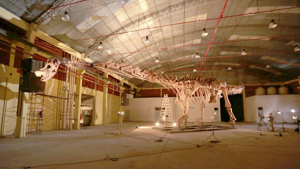 Model of titanosaur