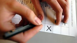 2017 Election Guidelines