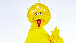 Matt Vogel is Big Bird