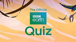 Now Blue Planet II fans can test their natural history knowledge using the BBC Earth Quiz App