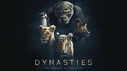 A first look at upcoming natural history landmark Dynasties