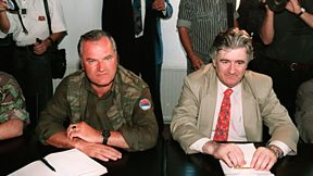 The Trial Of Ratko Mladic - Storyville