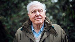 Sir David Attenborough to present landmark climate change film for BBC One