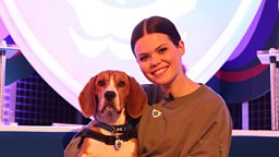 Blue Peter welcomes latest team member to the show - adorable new pet dog Henry