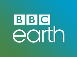 BBC Earth launches branded block on Cignal's One News Channel