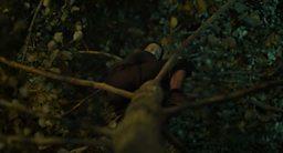 Jonathan Glazer's latest film surprises viewers on BBC Two