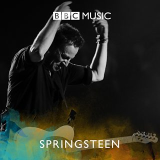 Image for Desert Island Springsteen