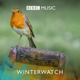 Image for Winterwatch