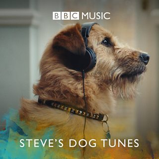 Image for Steve's Dog Tunes