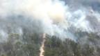 A huge bushfire on Fraser Island