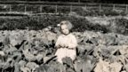 Young girl on an allotment