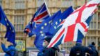 Demonstrators with flags in Westminster