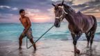 Boy and his Horse Under Indonesian Sun - Krista Paasi