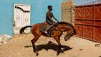 Fallou Diop riding a horse