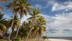 Measuring just 4 sq km, Tepoto is one of the smallest of French Polynesia's islands