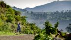 An Ethiopian woman descends back to the valley after visiting the church forest