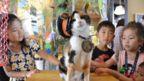 Children pet Tama, the original feline stationmaster of Japan's Kishi train station