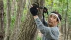 man setting up camera on a tree
