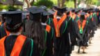 Image from behind of graduates on convocation day